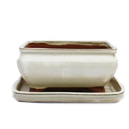 Bonsai cup and saucer Gr. 2 - light beige - square - model G81 - L 14,5cm - B 11,5cm - H 6,5cm