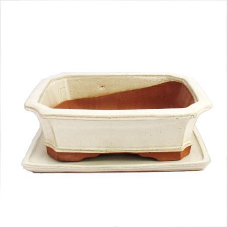Bonsai cup and saucer Gr. 5 - light beige - square - model G4 - L 31cm - B 23cm - H 9.5cm