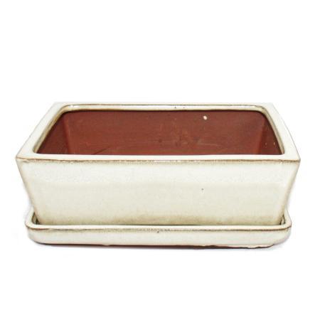 Bonsai bowl with saucer Gr. 3 - rectangular G1 - light beige - L 18cm - W 14cm - H 5,5cm