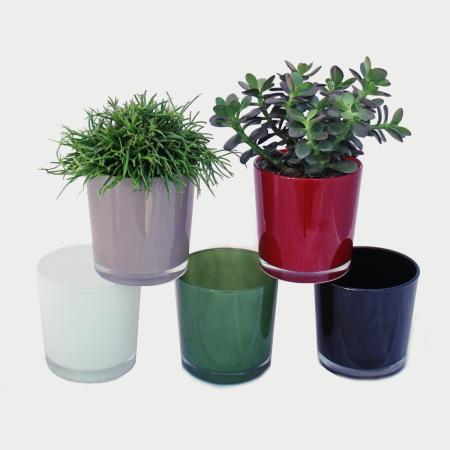 Overpot-Flowerpot glass conan 13cm different colors