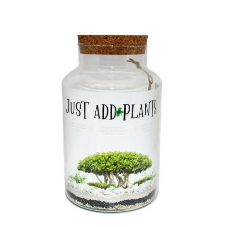 "Plant terrarium for your own plants ""Just Add Plants"""