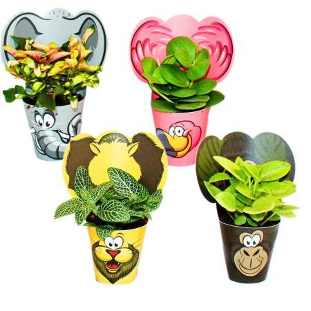 """Exotenherz - lustiges Zimmerpflanzen Set """"Animals"""" - 4 Pflanzen mit Tieren  - ideal als Gastgeschenk für Kindergeburtstage"""