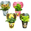 "Exotenherz - funny indoor plant set ""Animals"" -..."