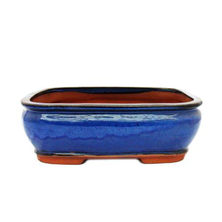 Bonsai pot - rectangular G81 - blue - L31.5cm x W25cm x H10cm