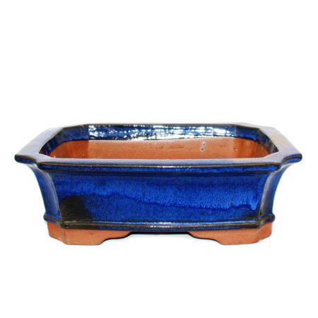 Bonsai pot - rectangular G4 - blue - L31cm x W24cm x H10.5cm