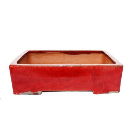 Bonsai pot XXL - rectangular GG1 - red - L41cm x W33cm x H11.5cm