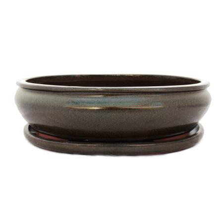 Bonsai cup and saucer Gr. 6 -Oliv - Brown - Oval - L 36cm - B 28cm - H 10cm