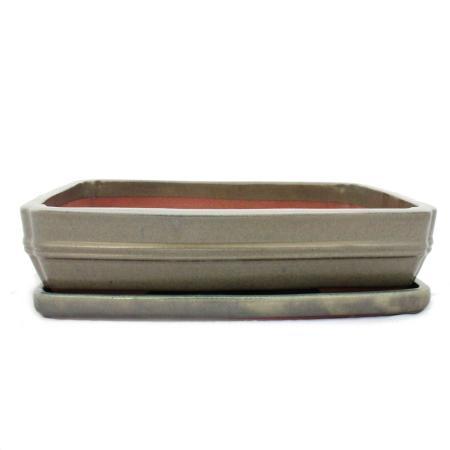 Bonsai cup and saucer Gr. 6 - Beige - Square - L 36cm - B 28cm - H 10cm
